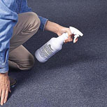 Carpet Treatments Help Render Dust Mite Allergen & Pet Allergen Harmless