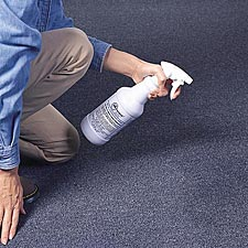 Use A Carpet Treatment To Kill Dust Mites & Neutralize Allergens